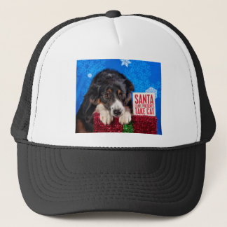 Santa take cat trucker hat