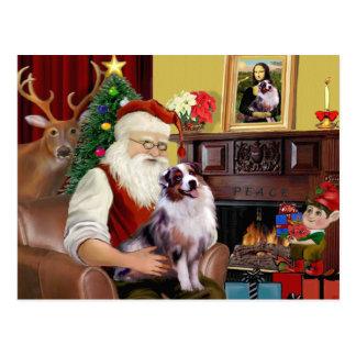 Santa's Australian Shepherd (merle) Postcard