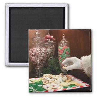 Santa's Cookies Magnet