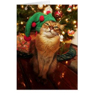 Santa's Elf Kitty Somali Cat Christmas Card