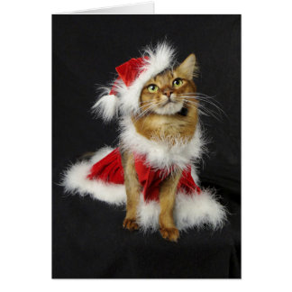 Santa's Little Helper Somali Cat Christmas Card