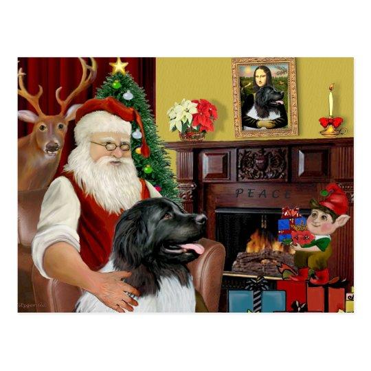 Santa's Newfoundland Landseer Postcard
