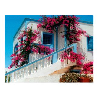 Santorini flower splendour postcard