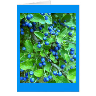 Sapphire Berries Greeting Card