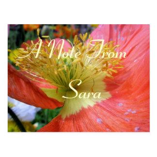 Sara Postcard
