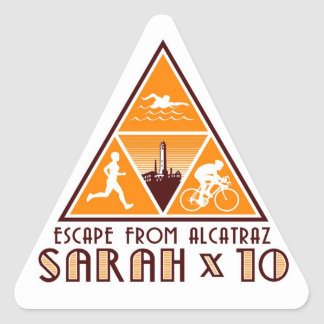 Sarah stickers! triangle sticker