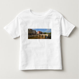 Sarajevo city, capital of Bosnia and Herzegovina Toddler T-Shirt