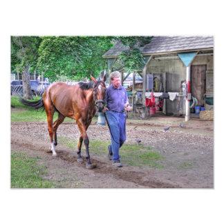 "Saratoga Stables ""Horse Haven"" Photograph"