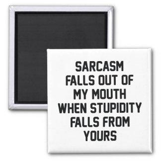 Sarcasm Stupidity Magnet