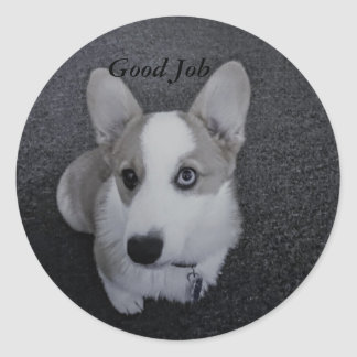 Sasha Blue Classic Round Sticker