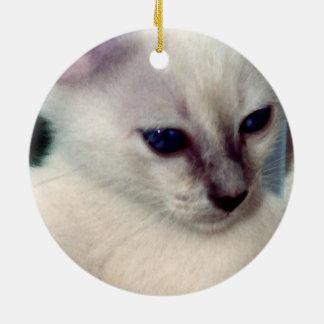 Sasha Kitten Ornament