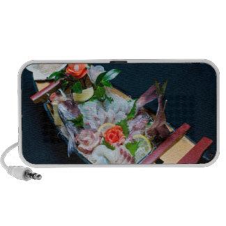 Sashimi Boat Speaker