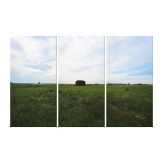 Saskatchewan Prairies Canvas Print