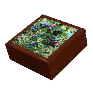 Saskatoon Gift Box
