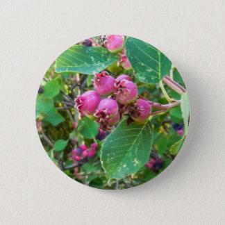 Saskatoons 2¼ Inch Round Button