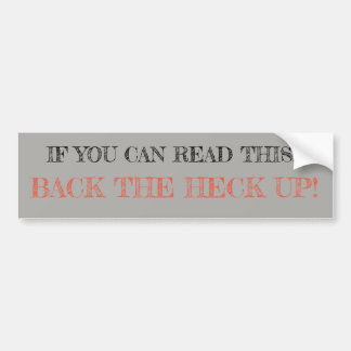 Sassy and Witty bumper stickers (silver/gray)