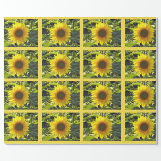 Sassy Summer Sunflowers Wrapping Paper