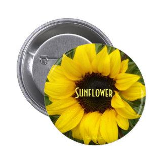 Sassy Sunflower Pinback Buttons