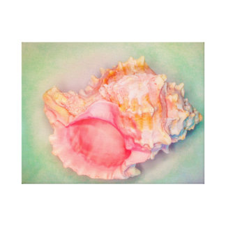 Saturated Shell Canvas Print