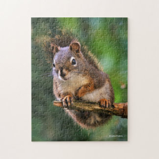 Saucy Red Squirrel in the Fir Jigsaw Puzzle