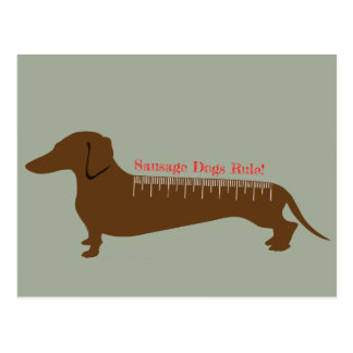 Sausage Dogs Rule Postcard
