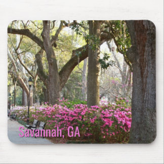 Savannah Georgia in Spring | Forsyth Park Azaleas Mouse Pad