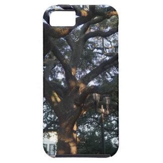 Savannah Oak Case For The iPhone 5