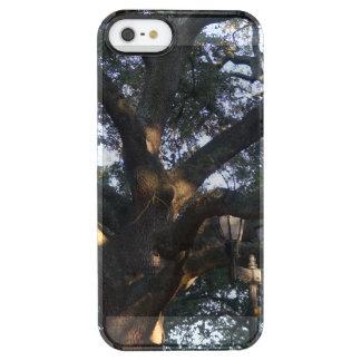 Savannah Oak Clear iPhone SE/5/5s Case