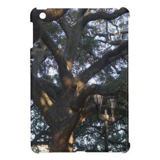 Savannah Oak iPad Mini Case