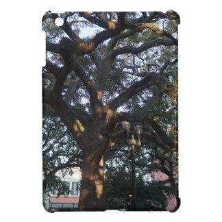 Savannah Oak iPad Mini Cover