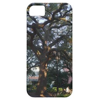 Savannah Oak iPhone 5 Covers