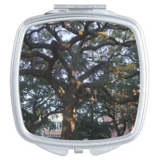 Savannah Oak Mirrors For Makeup