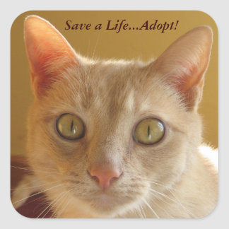 Save a Life...Adopt! Square Sticker