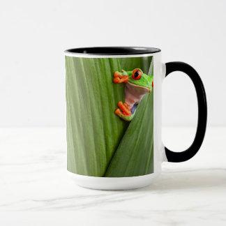 save eyed tree frog