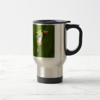 Save eyed tree frog mugs