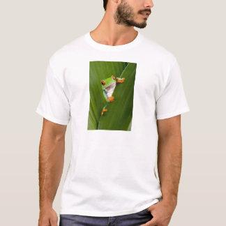 Save eyed tree frog T-Shirt