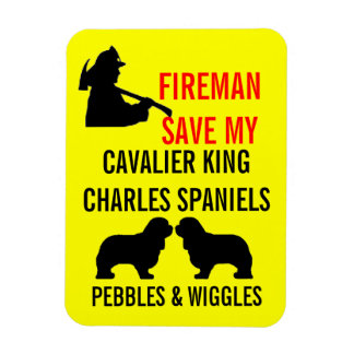 Save My Two Cavalier King Charles Spaniel Dogs Magnet
