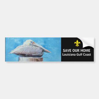 SAVE OUR HOME BUMPER STICKER