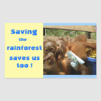 Save Rainforest and Cute Baby Orangutans Rectangular Sticker
