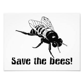 Save the Bees Art Photo