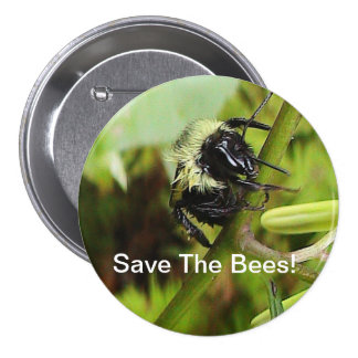 Save The Bees Button