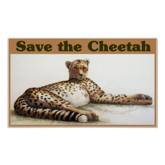 Save the Cheetah Poster