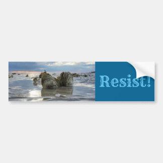 Save the Chesapeake Bay! Bumper Sticker