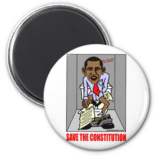 SAVE THE CONSTITUTION MAGNET