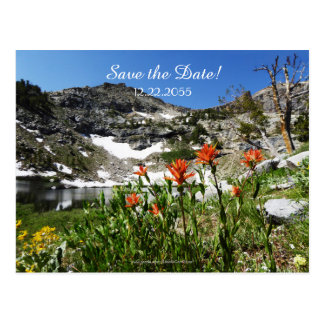 Save the Date 60th Anniversary Announcement Postcard
