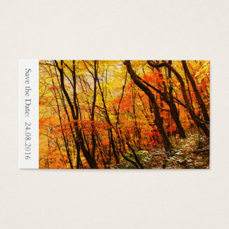 Save the Date Autumn / Fall Wedding 100 Cards