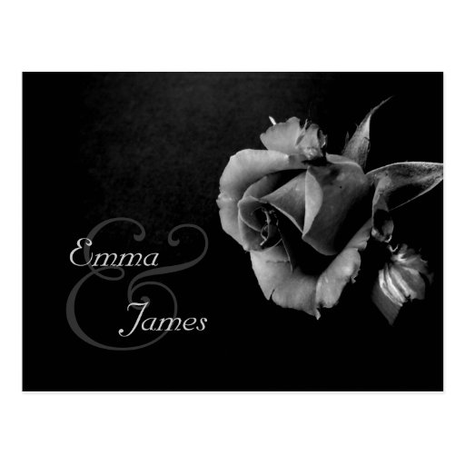 Save the Date Black and White Rose Postcard