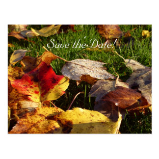 Save the Date Card - Autumn Leaves Postcard