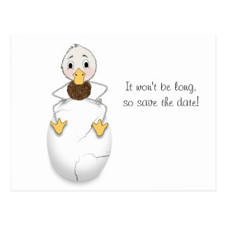 Save the Date for Baby Shower - Cracked Egg Postcard