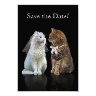 Save the Date for Cat Lovers Card